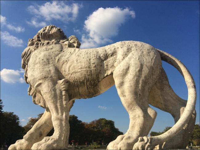 Turn around bright eyes: Lion, 1913, Jardin du Luxembourg (Photo by T. Brack)