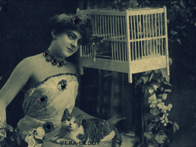 Got cats on my mind and my mind on cats (Postcard: T. Brack's collection)