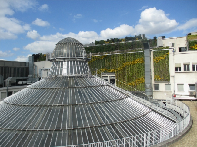Love on Top: Exterior view of the dome on the rooftop with the G.L.'s forward-thinking green garden in view