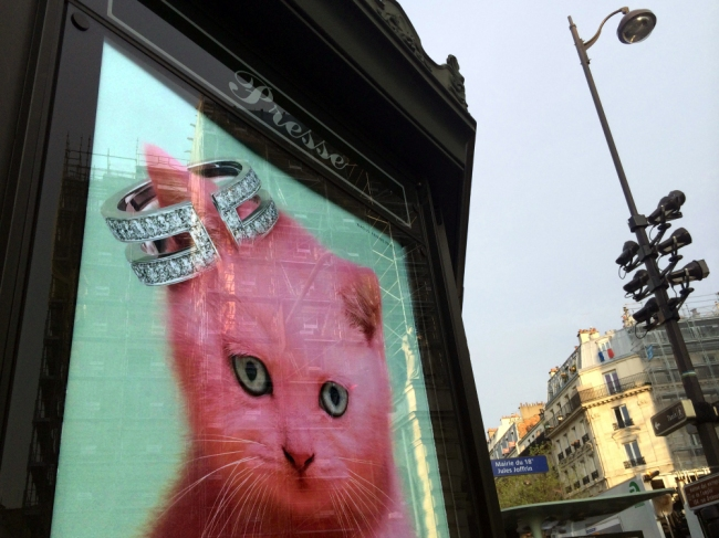 Latest Paris Fashion Trend: Cats wear custom-made hats, Abbesses-Montmartre (Photo by T. Brack)