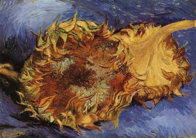 Two Cut Sunflowers, Van Gogh, Paris, 1887, The Metropolitan Museum of Art